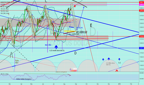 """XAUUSD: Jnug to Gold """"This is going down"""""""