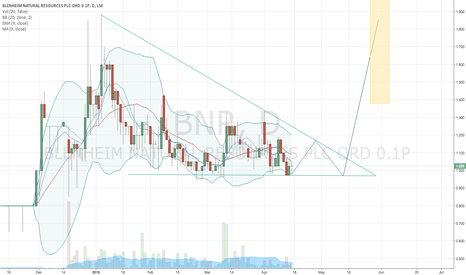 BNR: Blenheim Natural Resources PLC