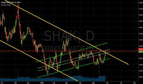 SHAK: Watching Long
