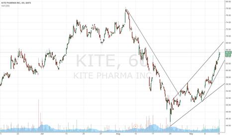 KITE: kite