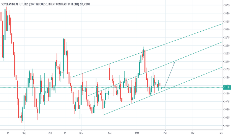 Ideas and Forecasts on Soybean Meal Futures — CBOT:ZM1! — TradingView