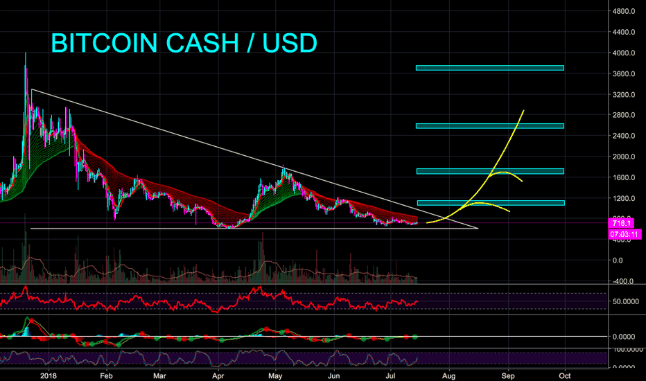 BCHUSD: BCH READY TO BLOW AFTER 7 MONTH ACCUMULATION - CryptoManiac101