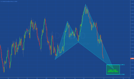 USDCAD: [USDCAD] LONG TERM SUPPORT AREA