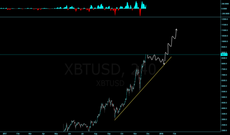 XBTUSD: BTC! Going to 10k?!