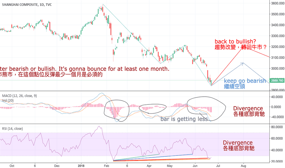 SHCOMP: China stock is going up for one month