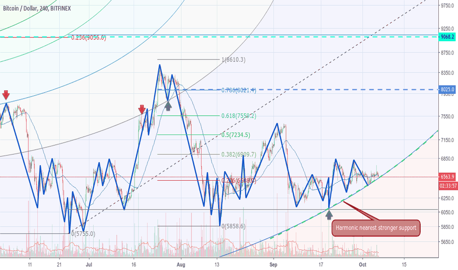 BTCUSD: Support Curve to monitor
