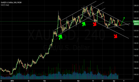 XAUUSD: How FOMC meeting might affect gold.....