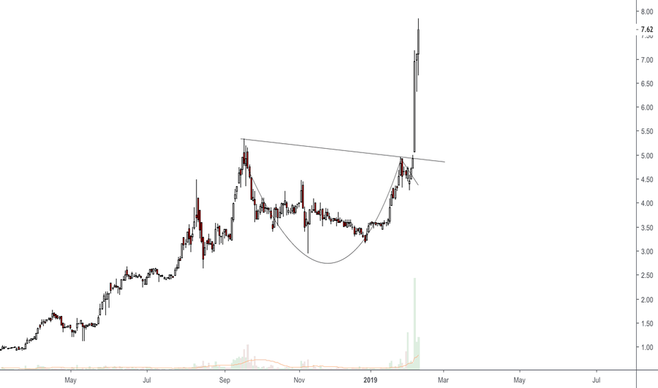 TPNL: Cup and Handle Pattern