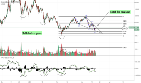 BTCUSD: Bullish Divergence + everyone & their mother wanted another low.