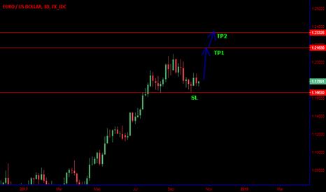 EURUSD: Bullish euro
