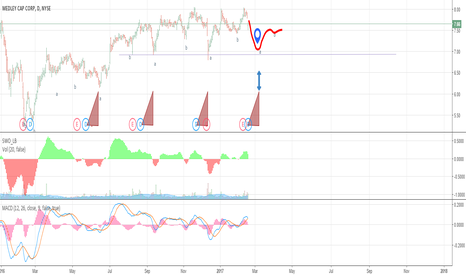MCC: Downward Impulse for Medley Cap Corp