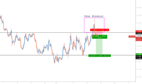 NZDUSD: NZDUSD Short False Breakout