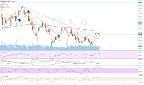 TSLA: Break out holding well, even after Morgan Stanley comments