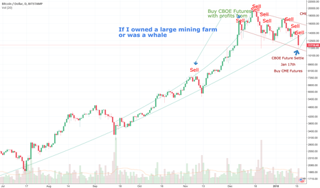 BTCUSD: The Breaching Whale