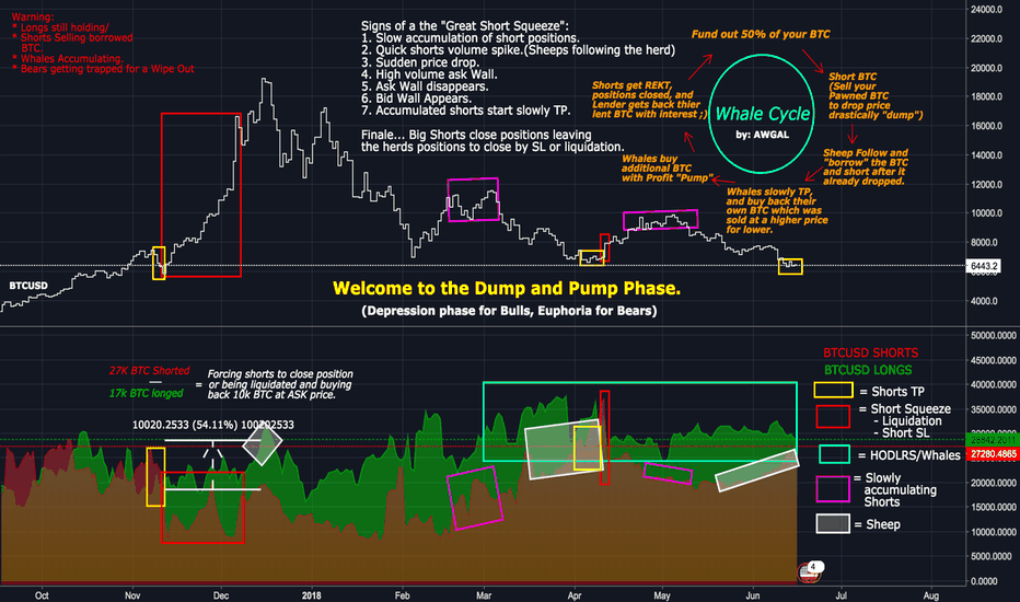 BTCUSDSHORTS: The Dump and Pump.