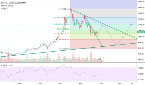BTCUSD: bitcoin rise to 14000$ and fall to 7000$