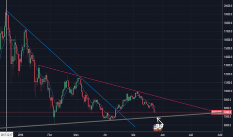 BTCUSD: Bitcoin en route vers les 7000 dollards ?