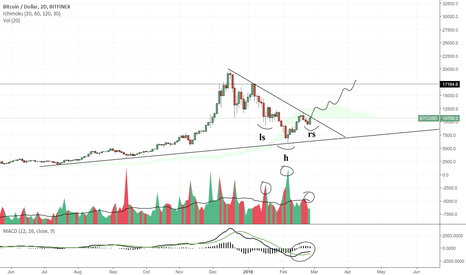 BTCUSD: Bitcoin is officially the most bullish chart in history