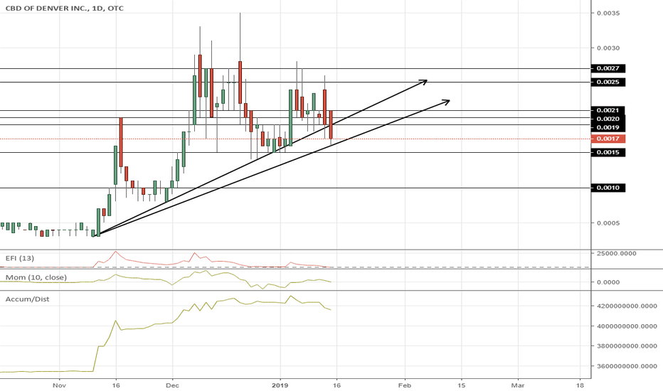 CBDD: $CBDD Continues on Accumulation into Possible News this Month