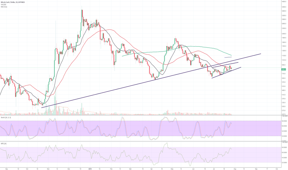 BCHUSD: BCH: to follow BTC in continued correction?