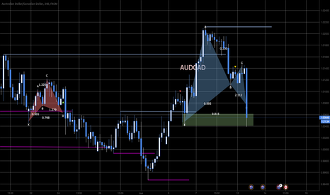 AUDCAD: Lorbeer Pattern into Support