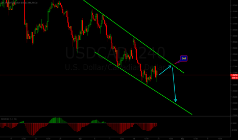 USDCAD: Channel Down