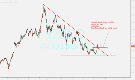 9202: ana holdings