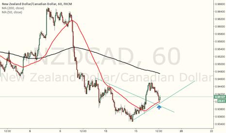 NZDCAD: Trend continuation, pinbar at 50MA
