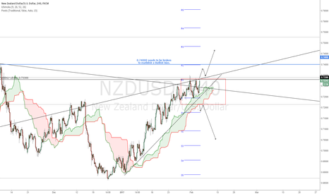 NZDUSD: NZDUSD - Hopefully a clear direction will established next week.