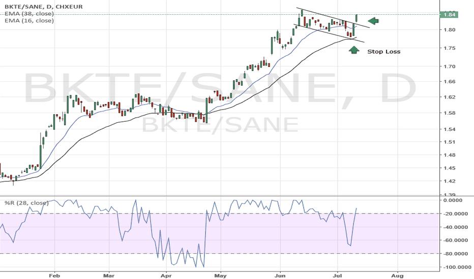 BKTE/SANE: Long BKTE short SANE