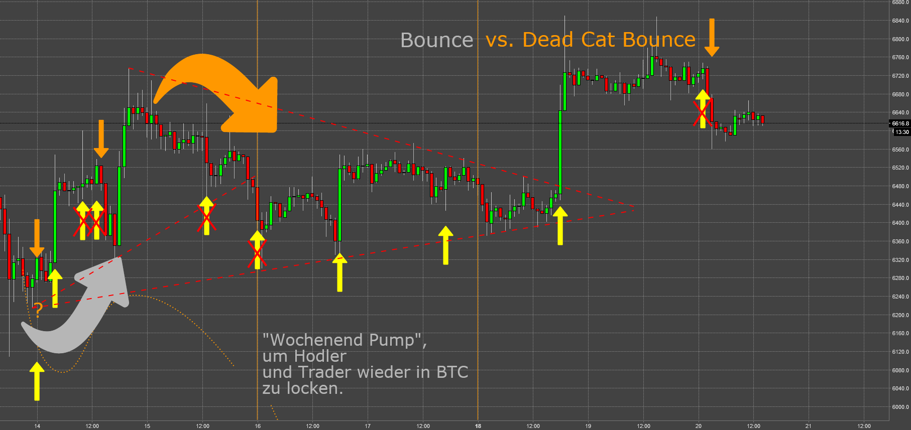 BTC: No Way Out (XII) - Dead Cat Bounce an der 6k Marke IV