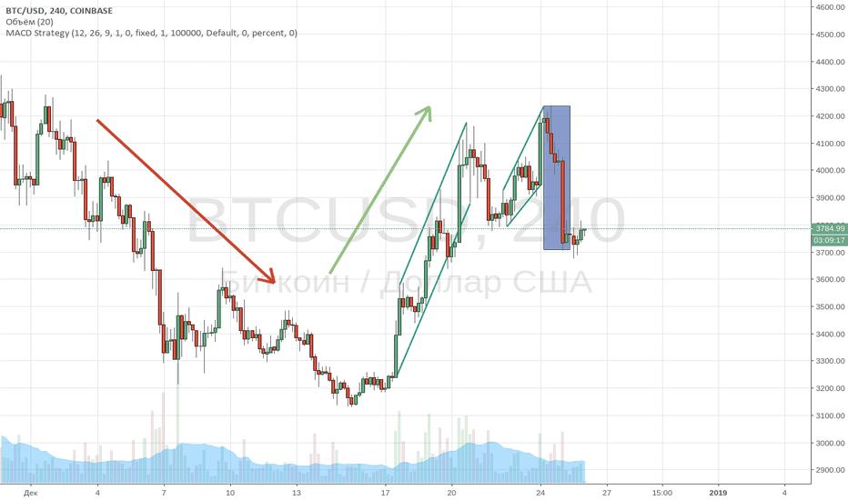BTCUSD: Bitcoin (BTC/USD). Плывем за китами.