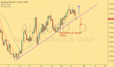 AUDUSD: Rejection or break...