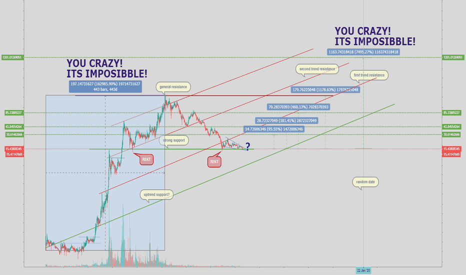 NEOUSD: NEO/USD from 100 to 7500% WHAT?