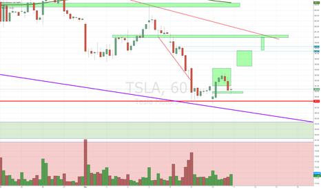 TSLA: Tsla Pullback