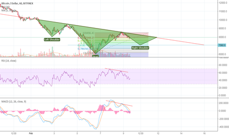 BTCUSD:  King Return | BTC | Possible Long at $7000