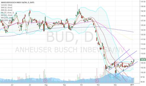 BUD: First