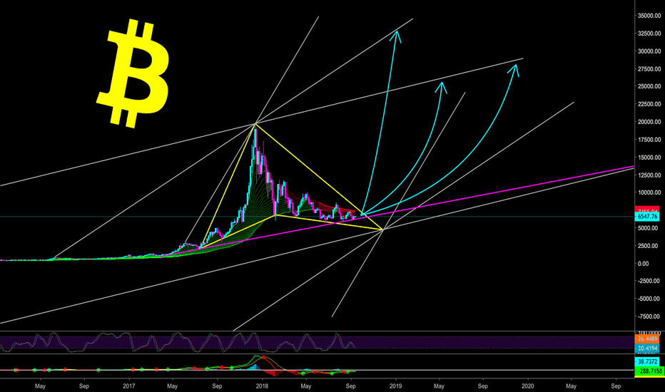 BTCUSD: IT ONLY TOOK 88 DAYS TO DO 540% - CryptoManiac101