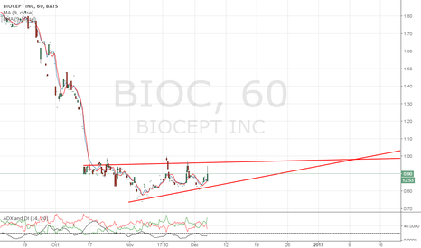 BIOC: Waiting for a break above the channel