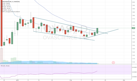 OVAS: OVAS Potential break of falling wedge
