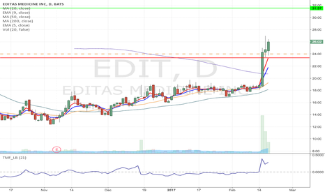 EDIT: EDIT - Strong flag formation Long from $24 to $31.57