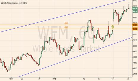 WFM: WFM - Gap Below