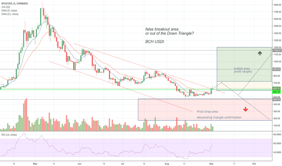 BCHUSD: BCH (bitcoin Cash) Bear territory or time to (clouded) Moon?