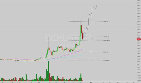BCHUSD: BTFD - Buy the Dip!