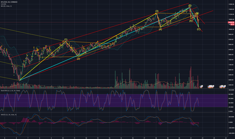 BTCUSD: Corrective wave or a pivot to a new pattern?