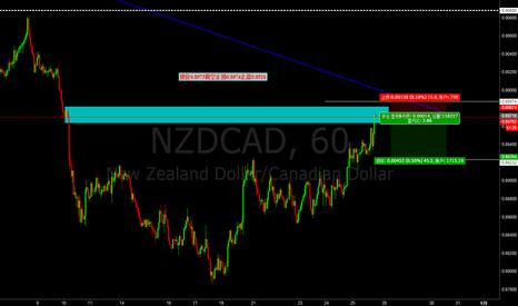 NZDCAD: 现价0.8973做空止损0.8974止盈0.8926