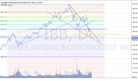 IBB: !BIOTECH WARNING!