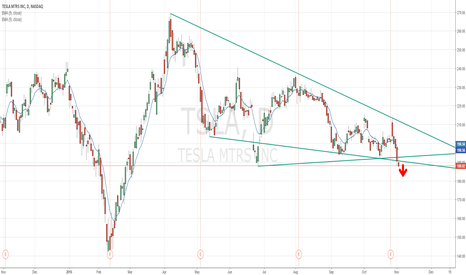 TSLA: TSLA losing trend