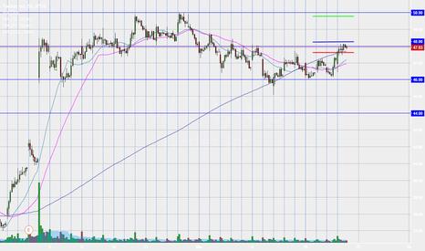 TWTR: TWTR daytrade long over the 1Hr chart