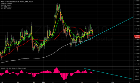 NZDUSD: at support break opens up further south & RSI bear diverengce
